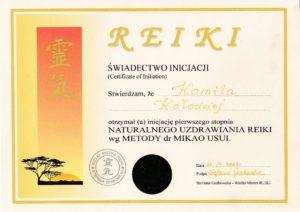Świadectwo inicjacji I stopnia Naturalnego Uzdrawiania REIKI wg metody doktora MIKAO USUI - 2003 r. (Akupunktura Wrocław ul. Krucza 122/3; Akupunktura Kamienna Góra ul. Boh. Getta 30/4 ; Tel. 691654201)